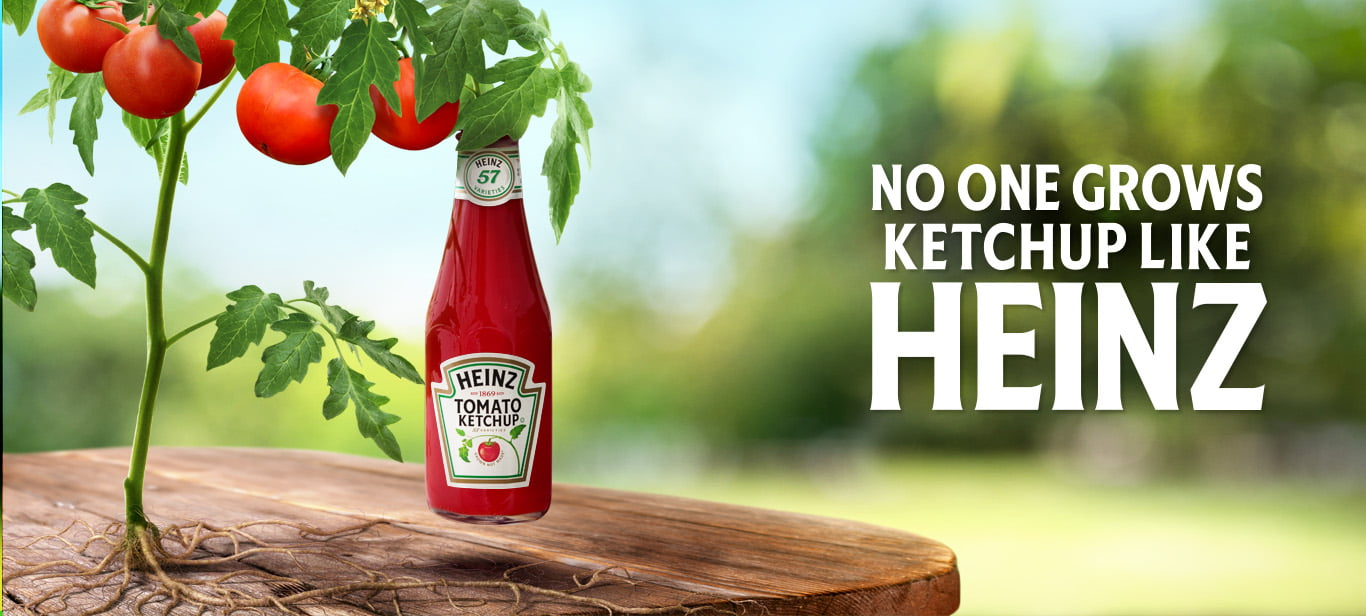 No one grows ketchup like heinz